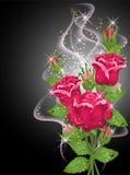 Rosas, humo y estrellas Imágenes de archivo libres de regalías