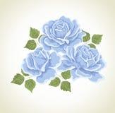Rosas. Ilustração com ramalhete das flores. ilustração stock