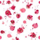 Rosas inconsútiles con los círculos Foto de archivo