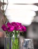 Rosas indicadas em um grande frasco de vidro foto de stock