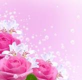 Rosas, lírios e bolhas Imagem de Stock Royalty Free