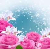 Rosas, lírios e bolhas Foto de Stock