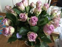 Rosas lilás no vaso Fotografia de Stock Royalty Free