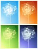 Rosas mágicas ilustración del vector