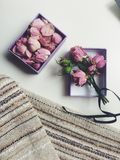 Rosas marchitadas Fotografía de archivo