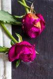 Rosas marchitadas con la tela en fondo de la pizarra Foto de archivo libre de regalías