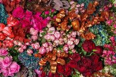 Rosas multicoloras del fondo imagen de archivo