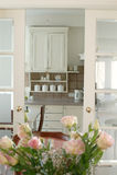 Rosas na cozinha imagens de stock royalty free
