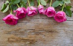 Rosas na placa de madeira velha, fundo do dia de Valentim, casamento a Dinamarca Foto de Stock