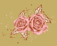 Rosas naturais Fotografia de Stock Royalty Free