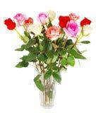 Rosas no branco. imagem de stock