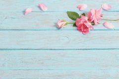 Rosas no fundo de madeira imagem de stock royalty free