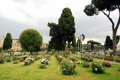 Rosas no jardim da cidade de Roma o 31 de maio de 2014 Imagens de Stock Royalty Free