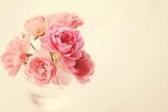 Rosas no vaso no rosa imagens de stock