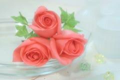 Rosas no Voile Imagem de Stock