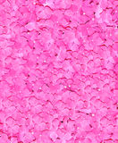 Rosas nupciais cor-de-rosa Wedding de acima Fotografia de Stock Royalty Free
