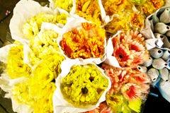 Rosas oferecidas no amanhecer do mercado da flor Fotografia de Stock