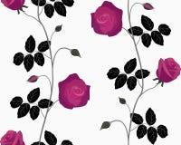 Rosas oscuras inconsútiles. Fotografía de archivo libre de regalías