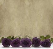 Rosas púrpuras en un fondo de piedra rústico Fotografía de archivo libre de regalías