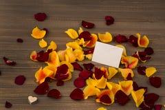 Rosas para el día de tarjeta del día de San Valentín y el día de madre Imagen de archivo libre de regalías