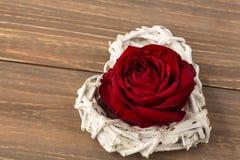 Rosas para el día de tarjeta del día de San Valentín y el día de madre Fotos de archivo