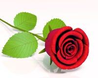 Rosas para las grandes celebraciones libre illustration