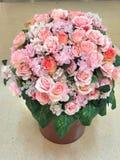 Rosas para sus amadas Imagen de archivo libre de regalías