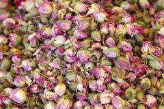 Rosas pequenas colocadas para a venda imagem de stock