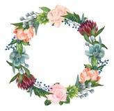 Rosas pintados à mão da aquarela, plantas carnudas e grinalda das peônias Fotografia de Stock Royalty Free