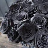 Rosas pretas imagem de stock
