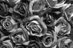 Rosas pretas Imagens de Stock Royalty Free