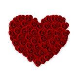 Rosas que dão forma ao coração do amor Fotografia de Stock Royalty Free