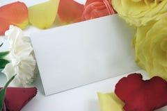 Rosas que forman un marco con la tarjeta de visita imágenes de archivo libres de regalías