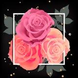 Rosas realistas en marco Imagenes de archivo
