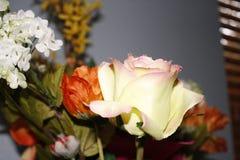 Rosas reflexivas Imagen de archivo libre de regalías