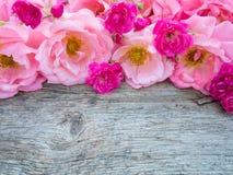 Rosas rizadas rosadas y pequeñas rosas rosadas vibrantes en el verraco de madera imagen de archivo