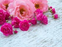 Rosas rizadas rosadas y pequeñas rosas rosadas vibrantes en la esquina imagen de archivo