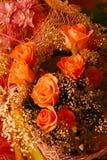 Rosas rojas. Fotografía de archivo
