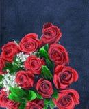 Rosas rojas Fotos de archivo libres de regalías