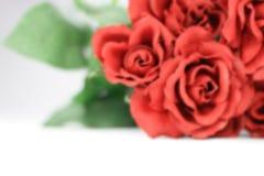 Rosas rojas borrosas de las tarjetas del día de San Valentín. Fotos de archivo