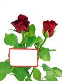 Rosas rojas con la tarjeta del regalo Imágenes de archivo libres de regalías