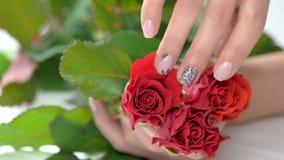 Rosas rojas de la caricia bien arreglada de la mano almacen de video