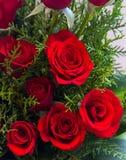Rosas rojas del día de tarjeta del día de San Valentín Fotos de archivo libres de regalías