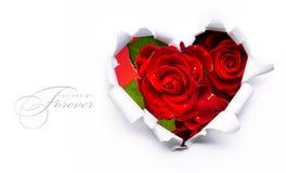 Rosas rojas del día de tarjeta del día de San Valentín de la bandera y corazón de papel Imágenes de archivo libres de regalías