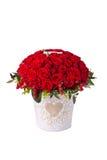 Rosas rojas del manojo en cubo Aislado en el fondo blanco Foto de archivo