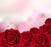 Rosas rojas dulces del día de tarjetas del día de San Valentín ilustración del vector