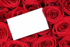 Rosas rojas el día de la tarjeta del día de San Valentín o de madres con la muestra y la copia vacías Foto de archivo