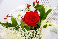 Rosas rojas en el ramo foto de archivo libre de regalías