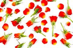 Rosas rojas en el tablero de madera, fondo del día de tarjetas del día de San Valentín Fotografía de archivo