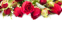 Rosas rojas en florero Fotografía de archivo